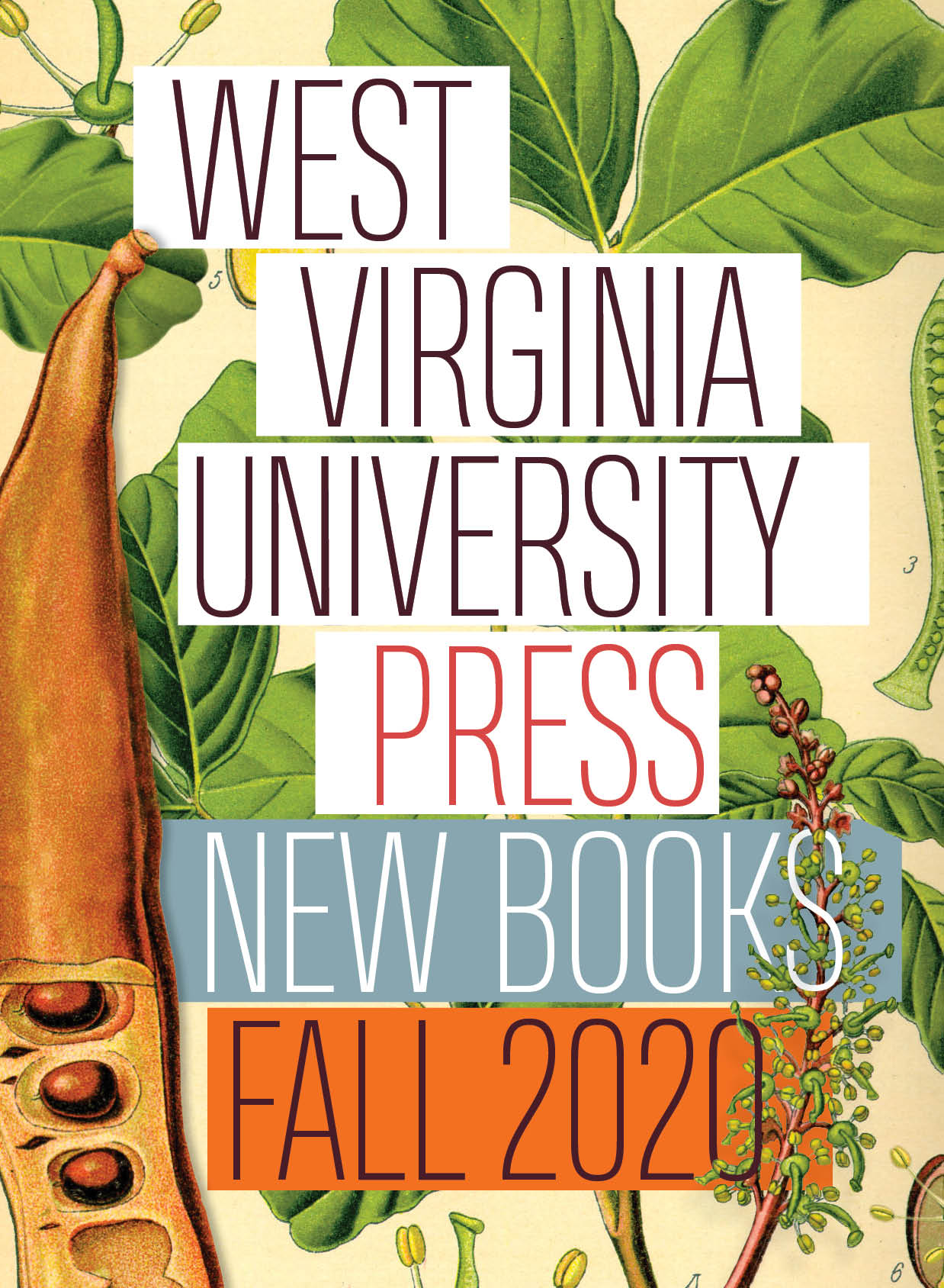 WVU Press Fall 2020 New Books Catalog
